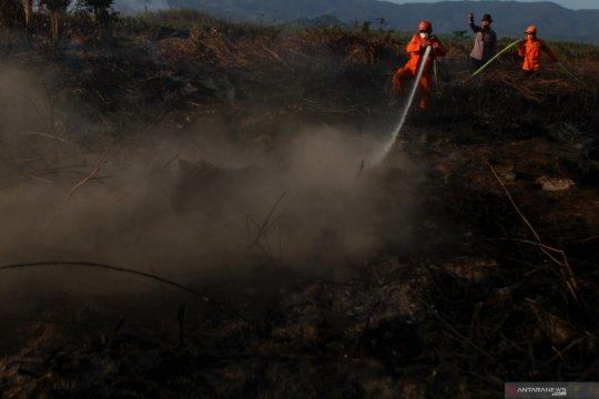 Kebakaran lahan gambut bertambah luas di Kolaka Timur
