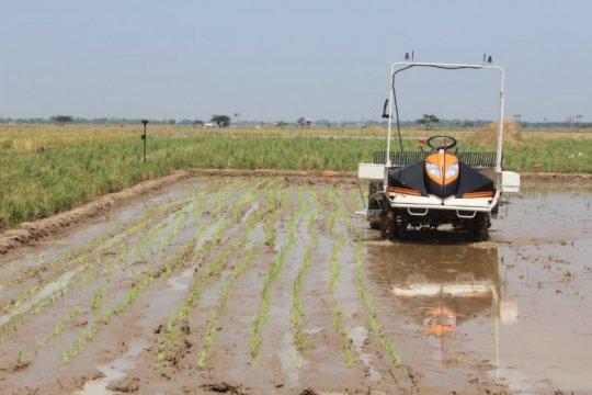 Kementan kembangkan teknologi pertanian berbasis IoT