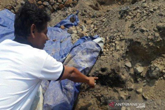 BPCB temukan arang gabah di Liyangan diduga lumbung padi