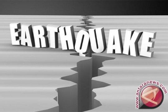 Gempa magnitudo 3,8 guncang barat laut Halmahera Barat