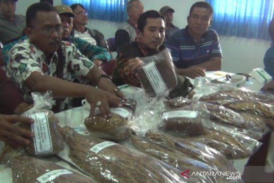 Petani tembakau Lumajang jajaki kerja sama dengan industri rokok Kudus