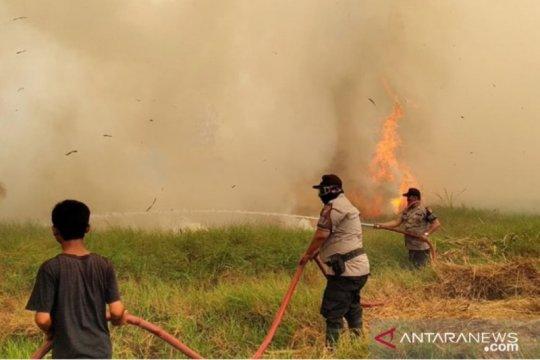 Polda Kalsel tersangkakan empat pelaku pembakaran lahan