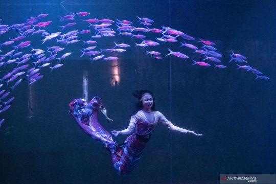 Pertunjukkan Magical Wondersea di Ancol
