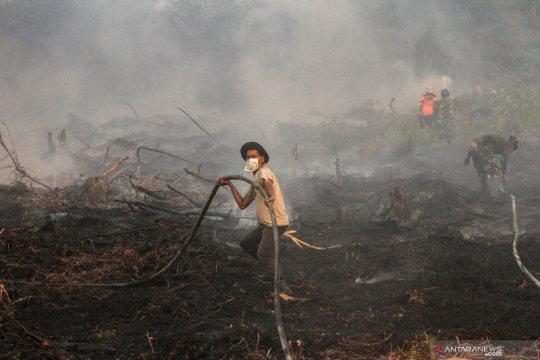 BNPB: 328.724 hektare hutan-lahan terbakar selama Januari--Agustus