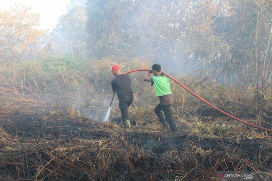 BNPB: Tidak terdeteksi asap karhutla ke Singapura dan Kuala Lumpur