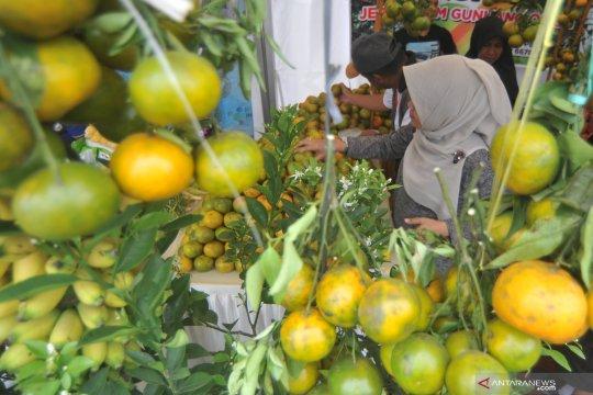Festival Florikultura Indonesia
