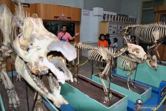 Peringatan 125 tahun Museum Zoologi