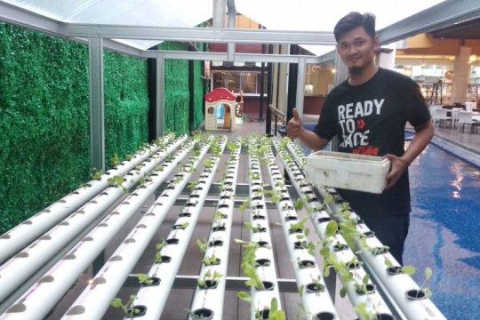Setiaji warga Natar manfaatkan loteng untuk kebun sayuran hidroponik