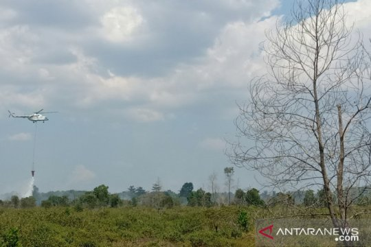 BMKG: seluruh wilayah Kalimantan Selatan diselimuti kabut asap