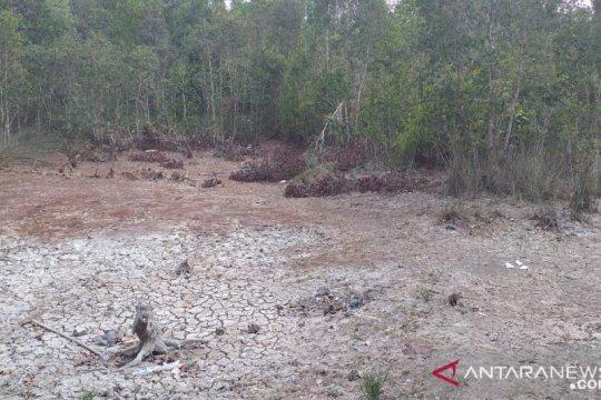 Warga di Belitung manfaatkan air bekas galian tambang untuk MCK