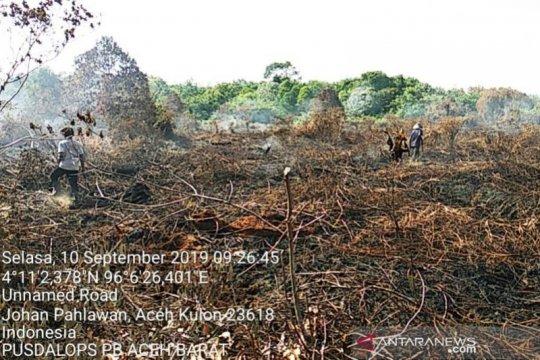 Hujan padamkan kebakaran hutan dan lahan di Aceh Barat