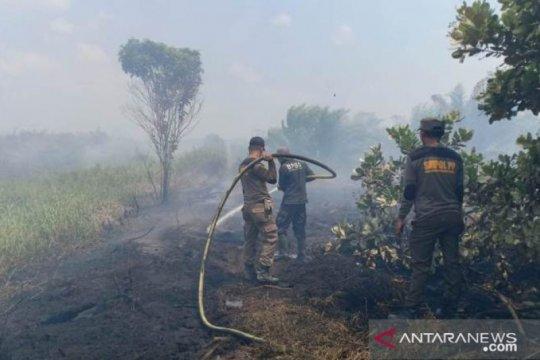 Kebakaran lahan gambut di Penajam belum berhasil dipadamkan