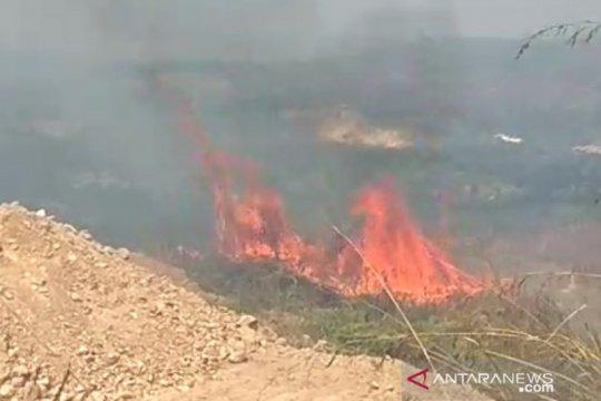 Lahan di area pertambangan Sukabumi kebakaran