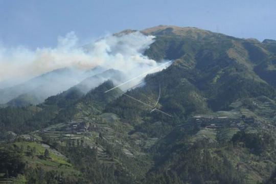 Kebakaran hutan gunung Merbabu Page 1 Small