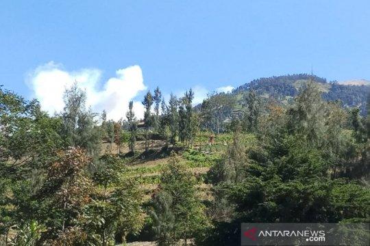 BTBGMb tutup jalur pendakian Merbabu akibat kebakaran