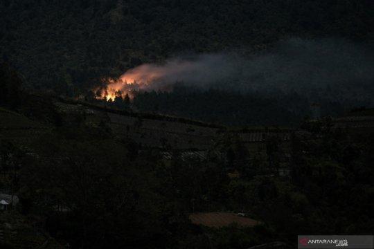14,3 hektare hutan lereng timur Gunung Slamet terbakar