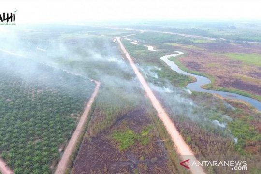 KLHK: Kebakaran hutan berkaitan dengan perkebunan