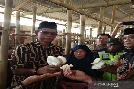 Dompet Dhuafa gandeng warga desa kembangkan budi daya jamur