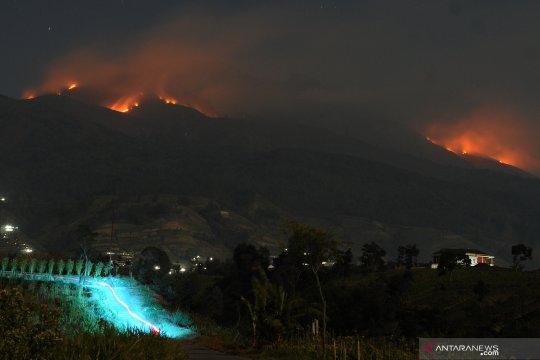 Dampak kebakaran hutan Gunung Merbabu