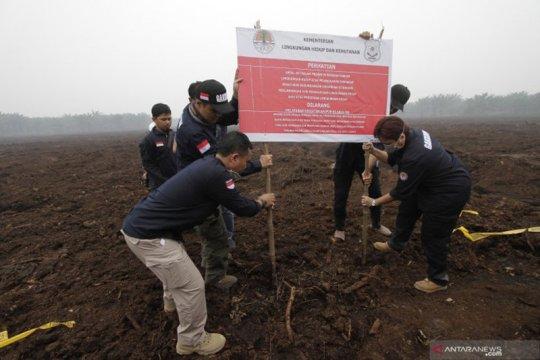 KLHK segel 10 konsesi perusahaan diduga penyebab karhutla Riau