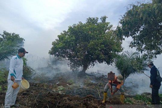 Aparat memadamkan kebakaran lahan sawit di Mukomuko