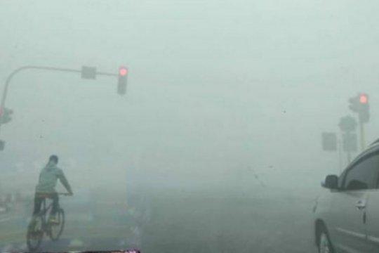 Kabut asap karhutla makin tebal di Kabupaten Paser