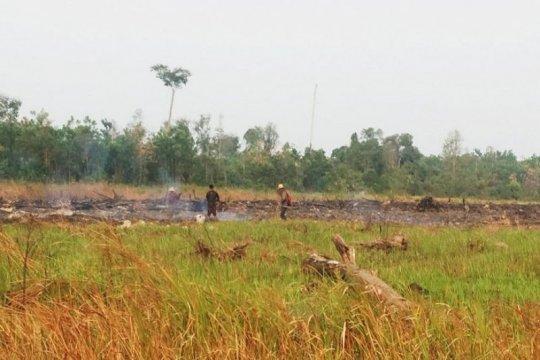 Tiga warga Kotawaringin Timur ditangkap polisi diduga membakar lahan