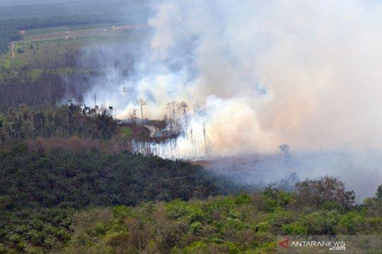 Pemerintah gerak cepat tanggulangi kebakaran hutan di Riau