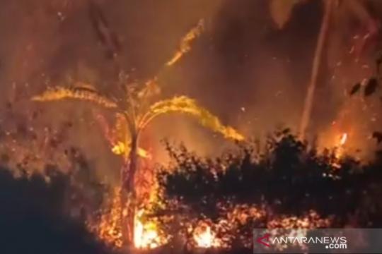 PBNU serukan cabut izin perusahaan pembakar hutan
