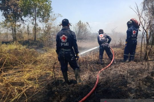 PMI kerahkan relawan atasi karhutla dan kabut asap