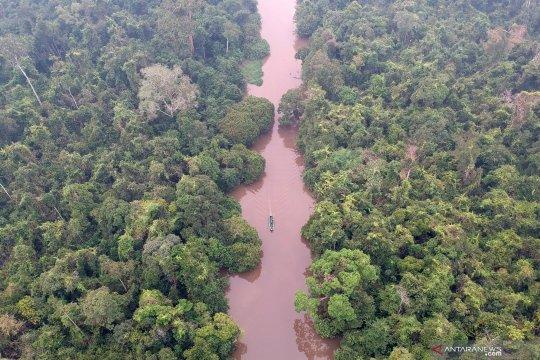 Melihat suasana Taman Nasional Berbak dan Sembilang di Jambi