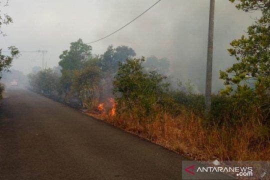 Lima hektare hutan di kawasan wisata Belitung terbakar