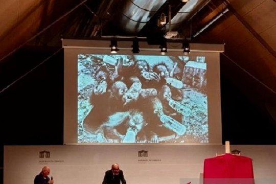 Foto bayi orangutan menangi penghargaan di Austria