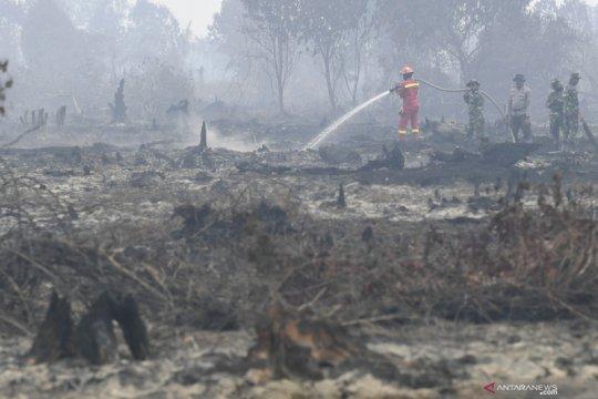 Greenpeace: KTT ASEAN momen tepat atasi masalah asap lintas batas