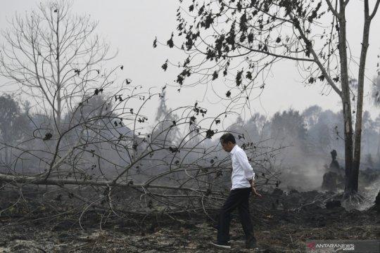 Status siaga darurat kebakaran hutan-lahan Riau berakhir