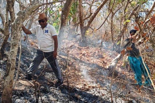 Kebakaran Gunung Ile Mandiri berpotensi timbulkan banjir bandang