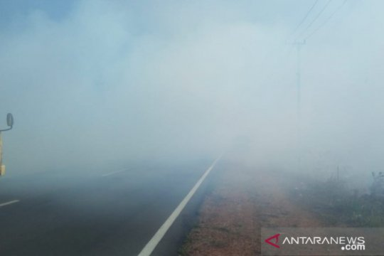 Kurangi asap karhutla, masyarakat Babel diminta tidak bakar lahan