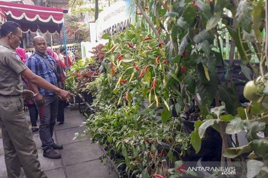 Pemkot Yogyakarta susun basis data ketahanan pangan