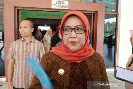 Terbang ke Korea, Ade Yasin akan jual potensi wisata Bogor