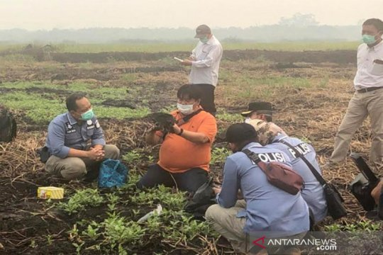 Gubernur tak miliki kewenangan mencabut izin korporasi perkebunan