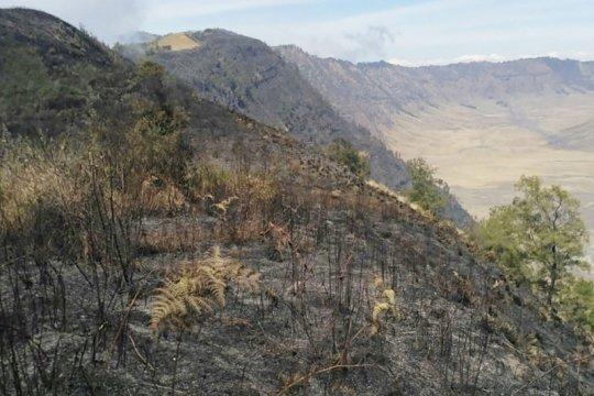 Pemadaman kebakaran di jalur pendakian Semeru terkendala
