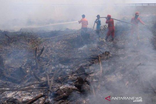 Satgas karhutla maksimalkan Tim Reaksi Cepat di desa-desa Sumsel