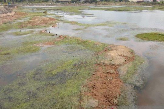 Air Waduk Gesek Bintan kembali mengering