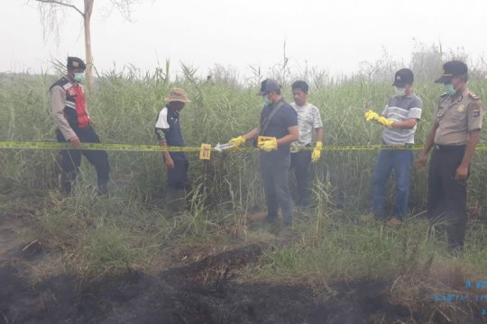 Pelaku pembakaran lahan Kalsel kembali diringkus polisi
