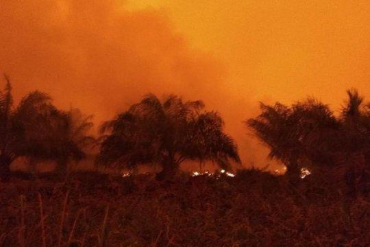 Satgas masih berupaya sekat kebakaran lahan di Kumpeh Ulu