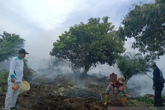 Tim gabungan berjibaku padamkan kebakaran lahan gambut Mukomuko
