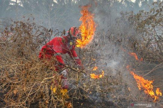 Menyeka asap dari lahan nanas menjadi tas