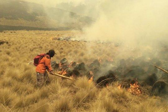 Titik api kebakaran di Gunung Semeru bertambah