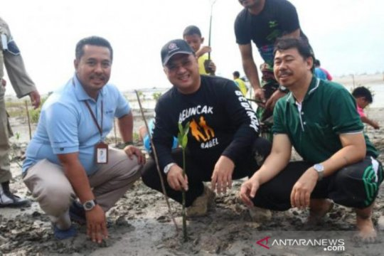 Ikebana - PT Timah tanam 27 hektare bakau di Pantai Rebo