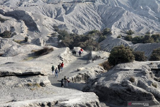 Wisata ke Gunung Bromo